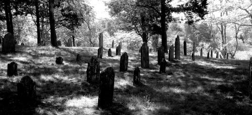 stockvault-cemetery-graveyard131043